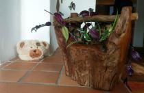 Rustikaler Großer Holztrog ~ DANA ~ 32 cm - Vintage Geschenkkorb Dekoschale - Handarbeit aus Wurzelholz - Windalf.de