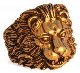 Ring ~ LUAN ~ Löwe - Bronze - Windalf.de