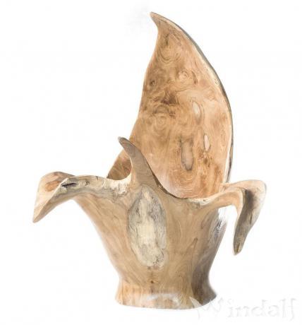Große Holz Teakschale ~ LARISSA ~ h: 47 cm - Deko Holzschale - Handarbeit aus Wurzelholz - Windalf.de